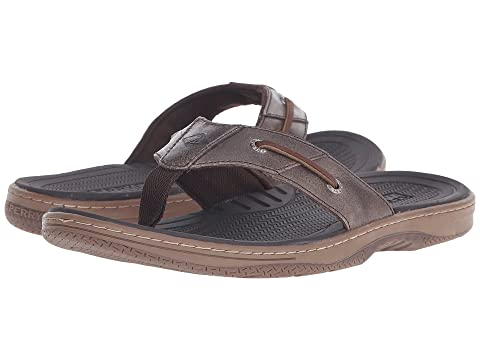 49245b262a0bf5 Sperry Baitfish Thong at Zappos.com