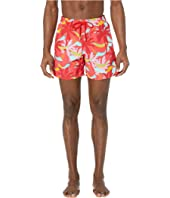 Vilebrequin - Ibiza Moorea Swim Trunks