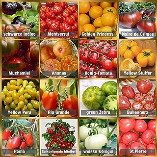 Tomaten Saat Set 16 x 10 Saatgut Tomaten Mix 100% Natursamen handverlesen aus Portugal, seltene und alte Sorten, Samen mit hoher Keimrate, Tomatensamen für Garten, Balkon, Terrasse, Gewächshaus