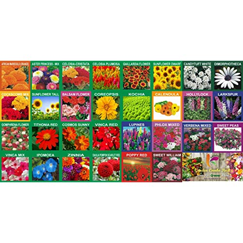 KRIWIN 30 Varieties Flower Seeds Combo 5220+ seeds with Start your Own Garden Guide Booklet