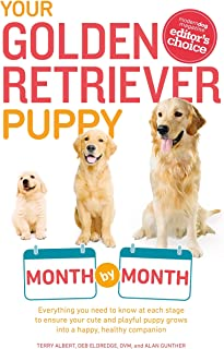 Your Golden Retriever Puppy Month by Month: Everything You Need to Know at Each Stage to Ensure Your Cute and Playful Puppy