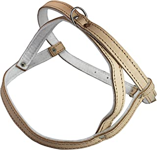 Leather Dog Harness Padded
