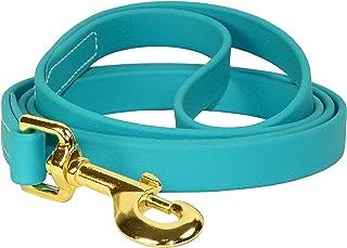 Perri's DL850 Beta Dog Leash, 5', Turquoise