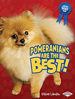 Pomeranians Are the Best! (The Best Dogs Ever)