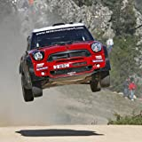 Verrückte WRC: Rennspiel