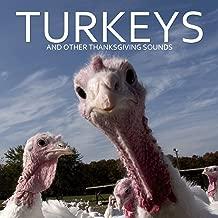 Mejor Thanksgiving Turkey Sound de 2020 - Mejor valorados y revisados