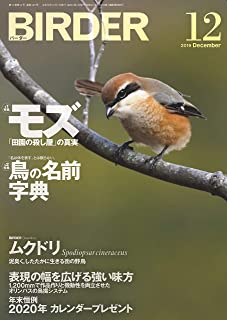 BIRDER (バーダー) 2019年 12月号 [雑誌]