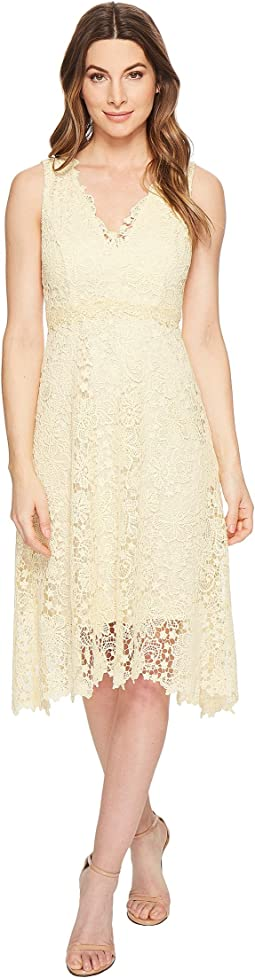 Sleeveless Lace V-Neck Fit and Flare with Waist Detail