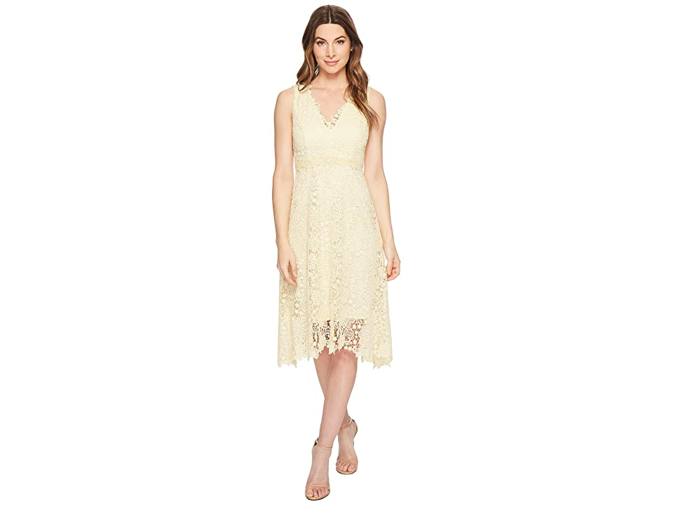 Donna Morgan Sleeveless Lace V-Neck Fit and Flare with Waist Detail (Pale Yellow) Women