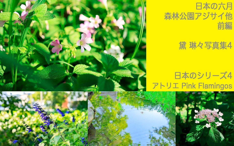 センサー残る超高層ビル日本の六月 森林公園アジサイ他 前編 日本のシリーズ4: 黛 琳々写真集4
