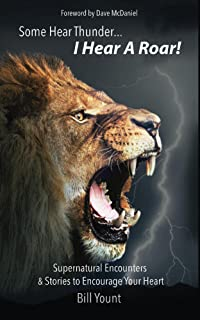 Some Hear Thunder... I Hear a Roar!: Supernatural Encounters & Stories to Encourage Your Heart