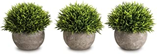 Best white topiary balls Reviews