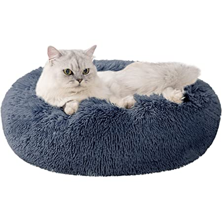 Love S Cabin 20in Cat Beds For Indoor Cats Cat Bed With Machine Washable Waterproof Bottom Blue Fluffy Dog And Cat Calming Cushion Bed For Joint Relief And Sleep Improvement