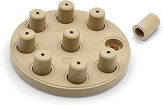Outward Hound Nina Ottosson Dog Puzzle Toy Dog Game
