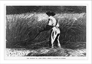 Historic Print (L): The veteran in a new field--from a painting by Homer