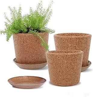 Wild Pact Set of 3 Cork Plant Pots (Large Grain) - 5.5