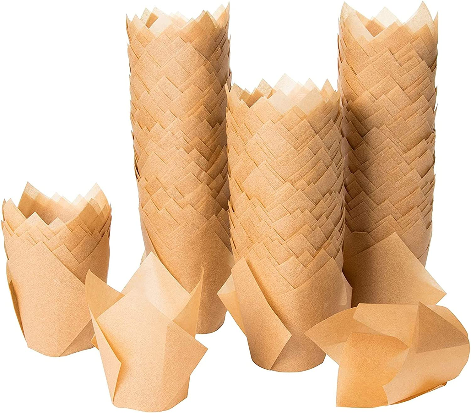Tulip Cupcake Liners - Columbus Mall 300-Pack Baking Medium low-pricing Wrapp Muffin Cups