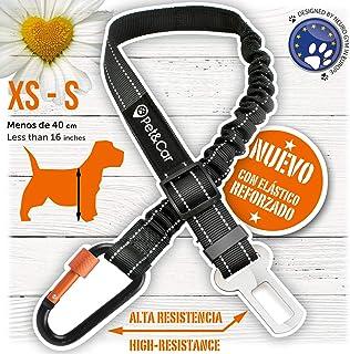 HAPPY HACHI Arn/és Perro Gato Suave Chaleco Acolchado C/ómodo para Viajar Pasear con Mascota Peque/ña Gatito y Cachorro M Naranja