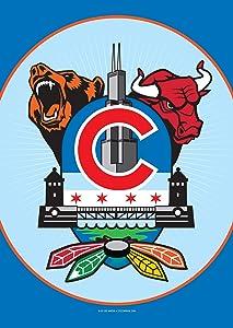 Chicago Sports Fan Crest Garden Flag by Joe Barsin, 12x18-Inch, Decorative USA-Produced
