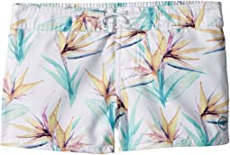 "O'Neill Kids Breeze 2"" Boardshorts (Big Kids)"