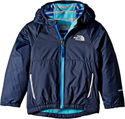Reversible Breezeway Wind Jacket (Toddler)