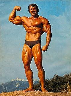 T106 Arnold Schwarzenegger Pop Art Deco Poster Wall Fabric 12x18 24x36