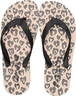 4c47f536d486 Women s COACH Sandals