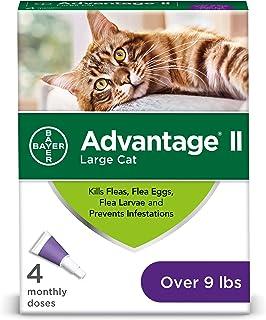Bayer Animal Health Flea Prevention Cats, Over 9 lbs, 4 Doses, Advantage II