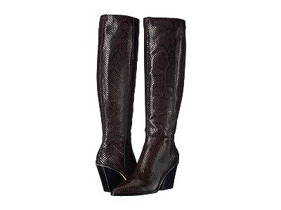 Dolce Vita Isobel (Espresso Snake Print Leather) Women