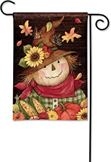 BreezeArt Studio M Autumn Scarecrow Fall Harvest Garden Flag - Premium Quality, 12.5 x 18 Inches