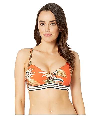 Seafolly Ocean Alley DD Cup Bralette Bikini Top (Tangelo) Women