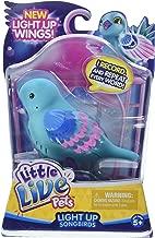 Little Live Pets Season 8 Bird Single Pack - Shelly Shimmer