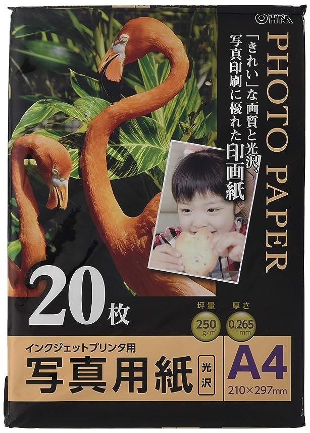 アマチュア処分したリングバック写真用紙 光沢 A4版 20枚入り PA-PRC-A4/20