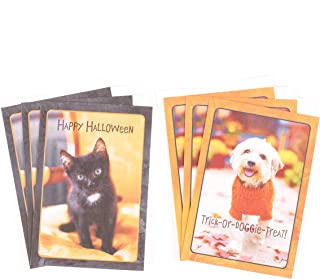 Hallmark Halloween Cards Assortment, Dog and Cat (6 Cards with Envelopes)