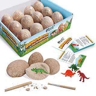 Virginia's Store Dinosaur Dig and Discover Kit with 12 Fun Fact Cards