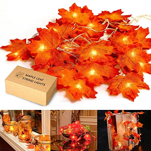MiMoo Thanksgiving, Maple Leaf 20LED 6.56ft Battery Powered Harvest Fall  Garlands String Light
