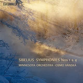 symphony no 5 1st movement