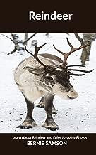 Best bernie the reindeer Reviews