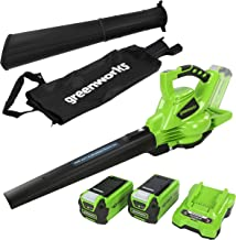 Greenworks Cordless Vacuum Cleaner and Leaf Blower 2in1 GD40BVK2X (Li-Ion 40 V 185 km/h Air Speed 45l Collection Bag Varia...