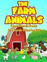 Best kid friendly horse videos Reviews