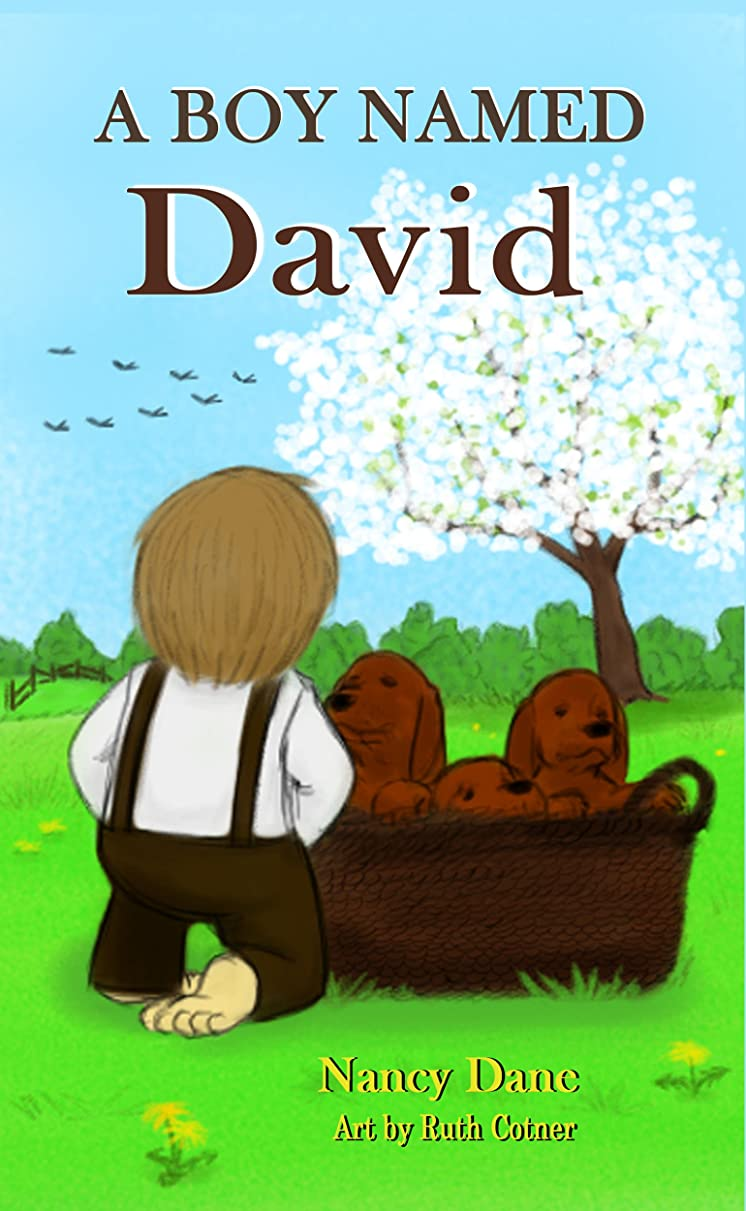 A Boy Named David (Civil War Orphan Series Book 3) (English Edition)