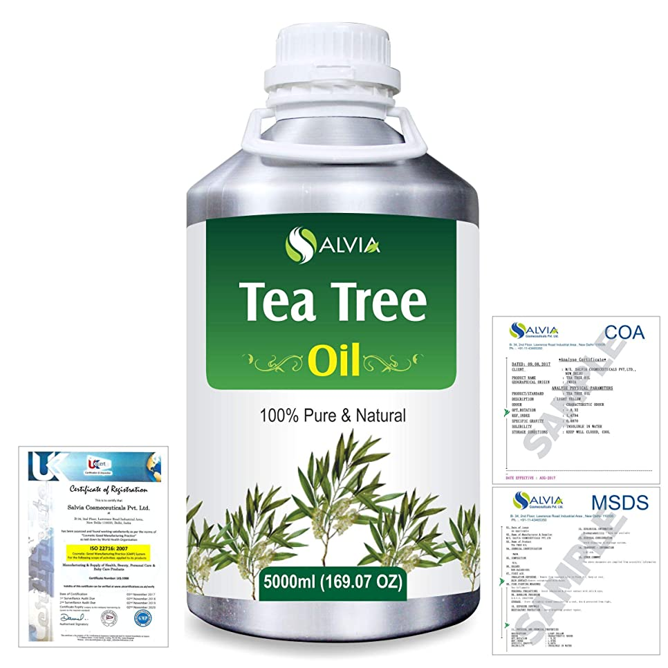痛い大審判Tea Tree (Melaleuca alternifolia) 100% Natural Pure Essential Oil 5000ml/169fl.oz.