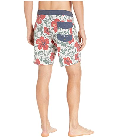 Salty Crew Hooked Floral Boardshorts (Off-White) Men