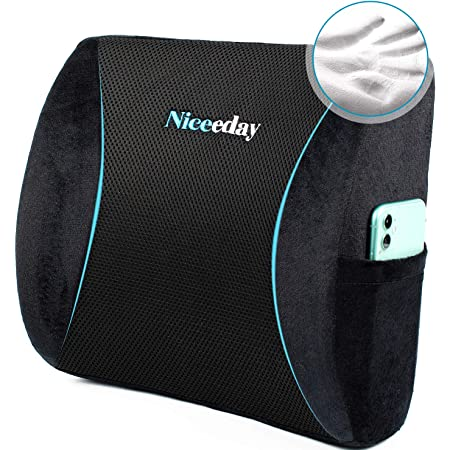 2021 Updated Lumbar Support Pillow Back Pillows for Office Home Car Lumbar Pillows with Breathful 3D Mesh Cover, Memory Foam Lumbar Pillows for Lower Back Pain Relife, Back Cushion for Office Chair