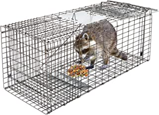 raccoon cage traps for sale