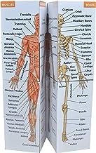 مکعب مطالعه آناتومی انسان | مطالعه 9 قسمت از بدن انسان | راهنمای تجدید نظر در آناتومی کامل | مکعب آناتومی اعتیاد آور | هدیه عالی برای پرستاران ، دندانپزشکان ، دانشجویان پزشکی
