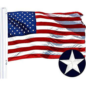 FI Texas Embroidered Flag 4x6ft-
