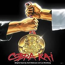 Best cobra kai soundtrack Reviews