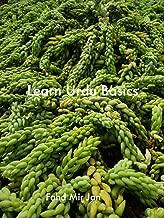 Learn Urdu (English Edition)