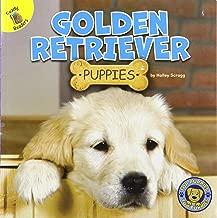 Top Puppies: Golden Retriever Puppies – Rourke NonFiction Reader, Grades PK–2